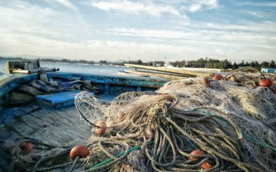 GHOST NETS FROM THE SEA ARE NOW TRANSFORMED INTO NEW PLAST BOXES